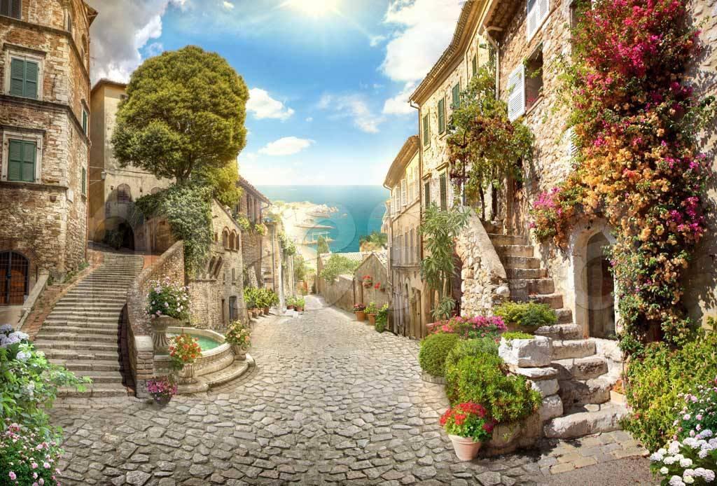 фотообои улицы и дворики села имеет